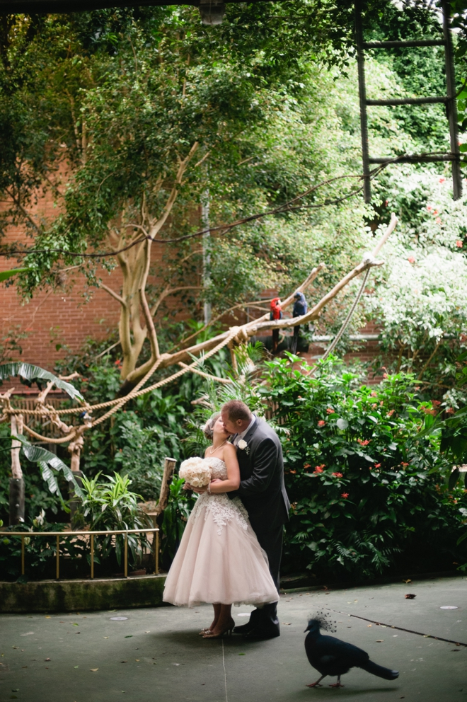 National Aviary Wedding Photographer