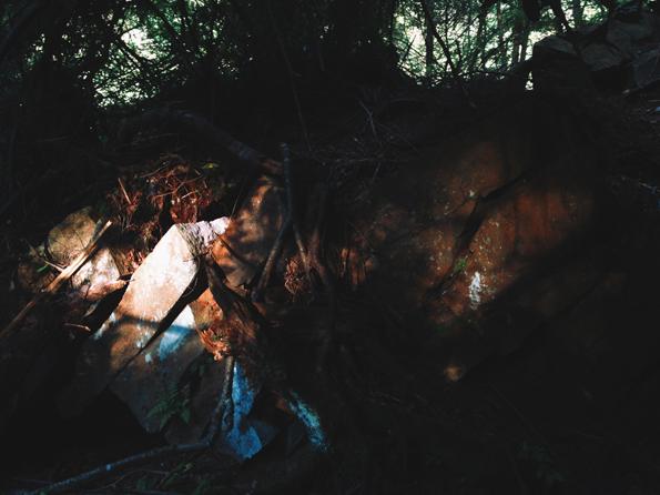 VSCO cam photography (2)