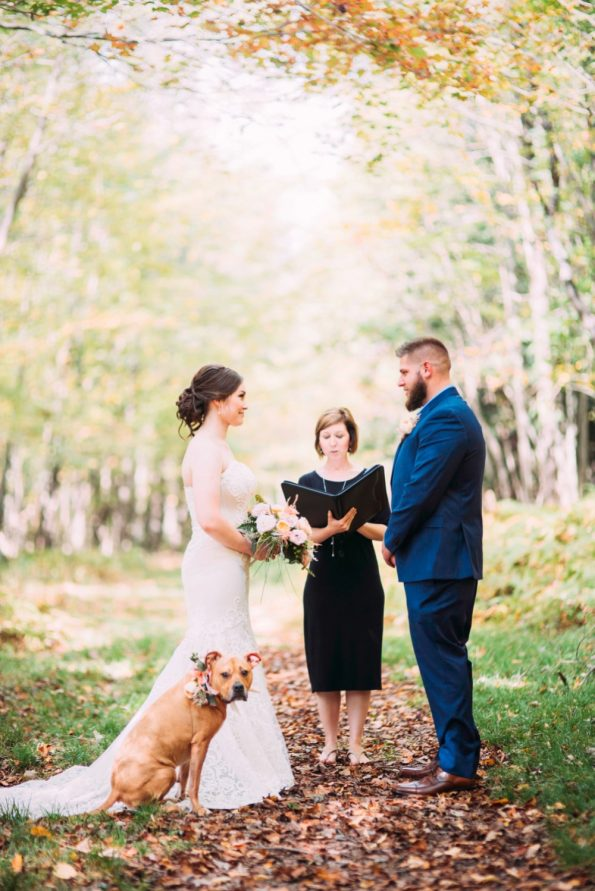 bride and groom and wedding dog in the woods