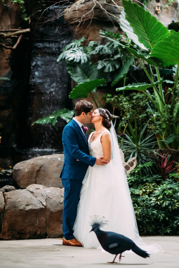 National Aviary Wedding Pittsburgh Photographers